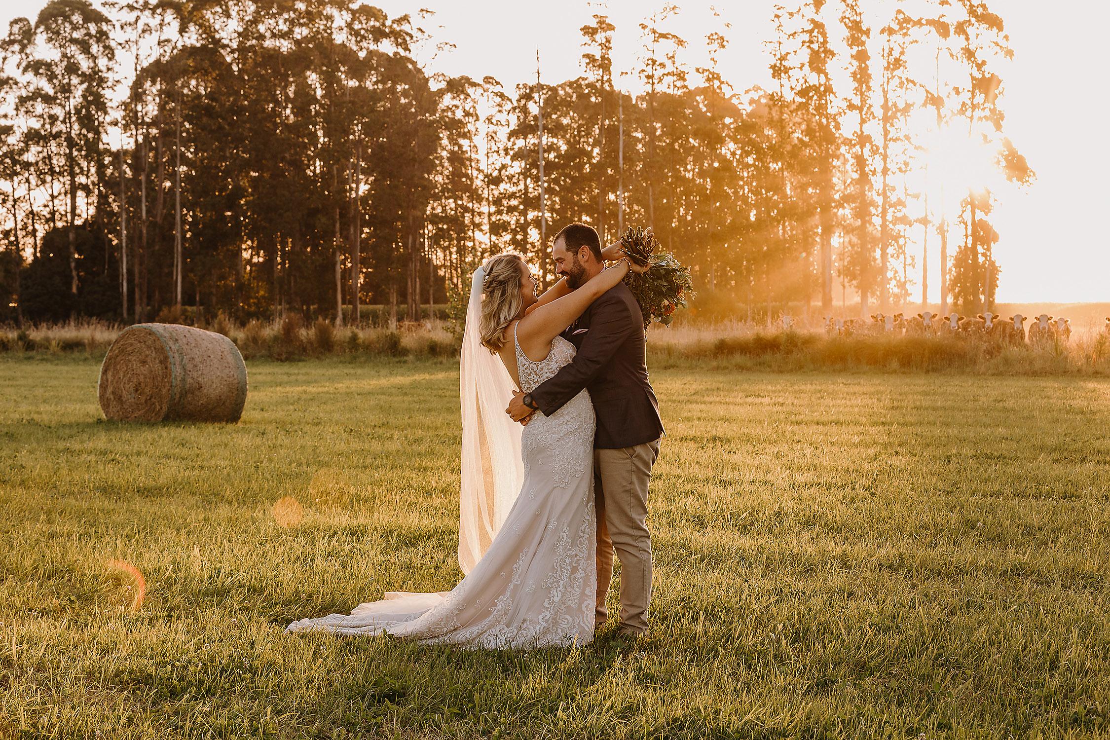golden hour bride and groom farm wedding wedding photographer christchurch