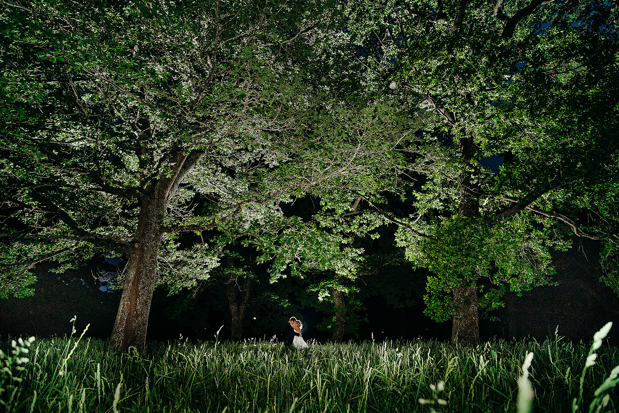 creative light night photo at wedding with bride and groom in trees at bangor farm christchurch wedding photographer