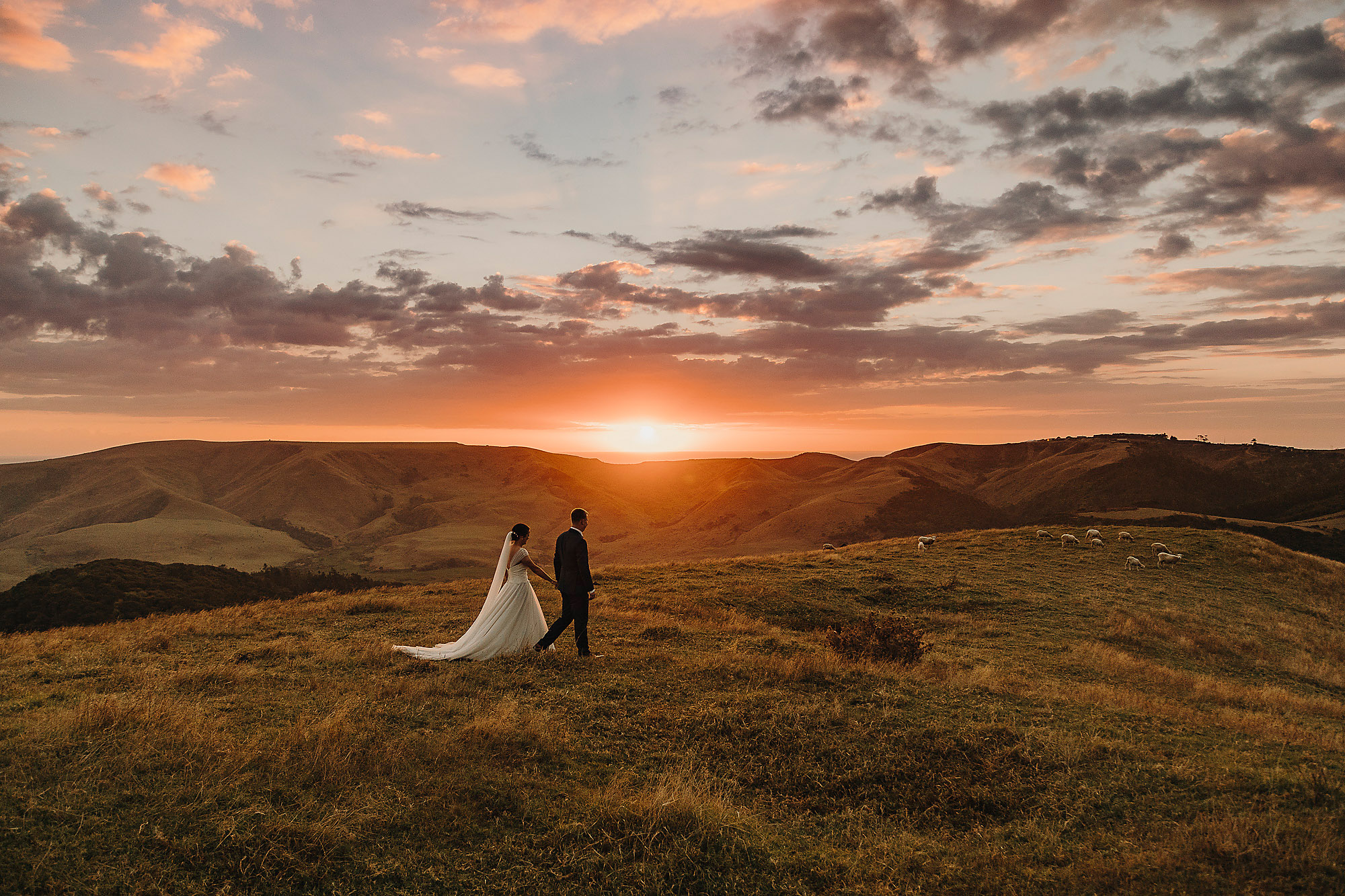 bride and groom walking at sunset ontop of hills silhouette jonkers farm christchurch wedding photographer