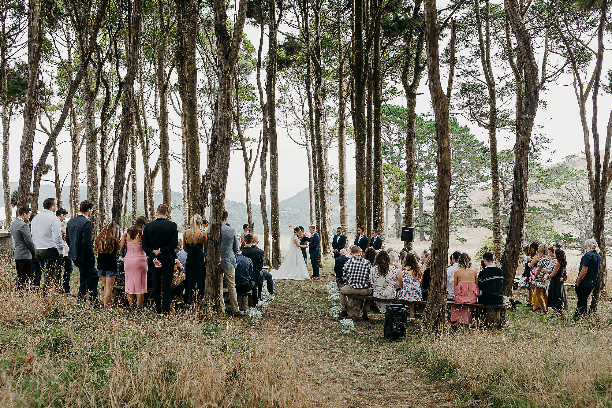 jonkers farm wedding ceremony in trees christchurch wedding photographer